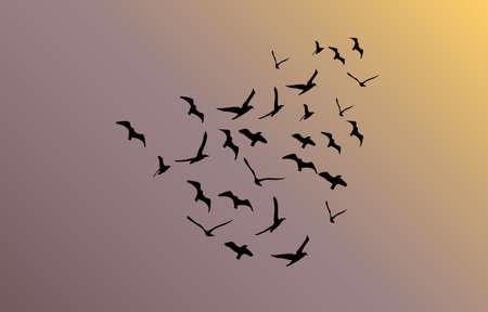 follow the leader: vector flock of flying birds towards bright sun