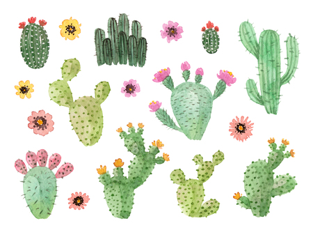 watercolor hand painted cactus. isolated elements Imagens