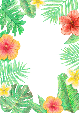 tropical exotic leaves and flowers frame. palm leaves, hibiscus and plumeria. hand drawing colored pencils illustration. isolated elements 版權商用圖片 - 103444219