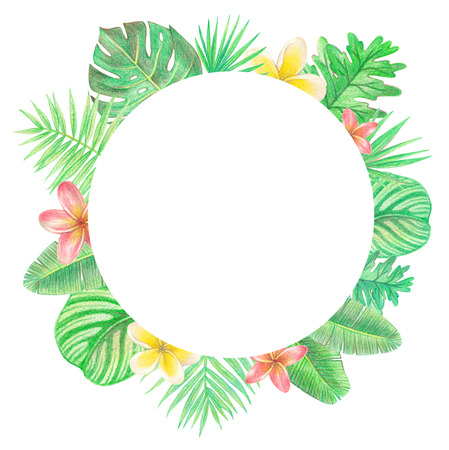 tropical exotic leaves and flowers circle frame. palm leaves and plumeria. hand drawing colored pencils illustration. isolated elements