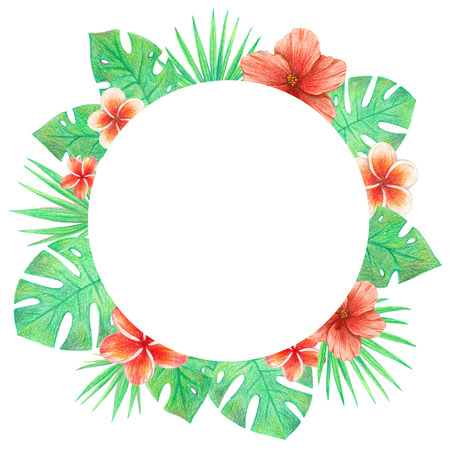 tropical exotic leaves and flowers circle frame. palm leaves, hibiscus and plumeria. hand drawing colored pencils illustration. isolated elements