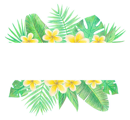 tropical exotic leaves and flowers. palm leaves and plumeria. hand drawing colored pencils illustration. border frame. isolated elements 스톡 콘텐츠