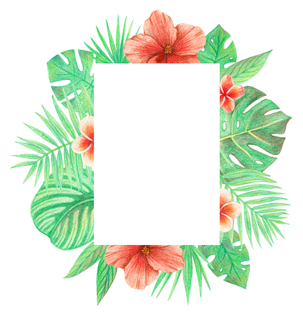 tropical exotic leaves and flowers frame. palm leaves, hibiscus and plumeria. hand drawing colored pencils illustration. isolated elements 版權商用圖片 - 103444223