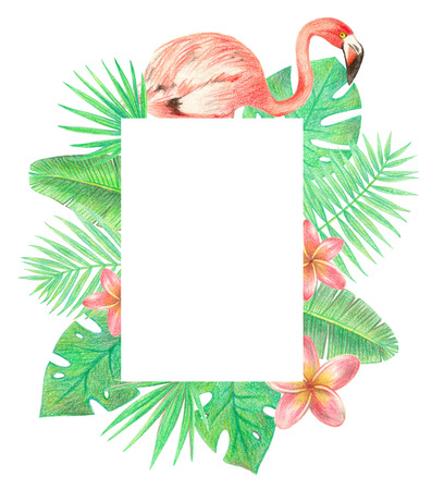tropical exotic bird, leaves and flowers frame. flamingo, palm leaves and plumeria. hand drawing colored pencils illustration. isolated elements 스톡 콘텐츠