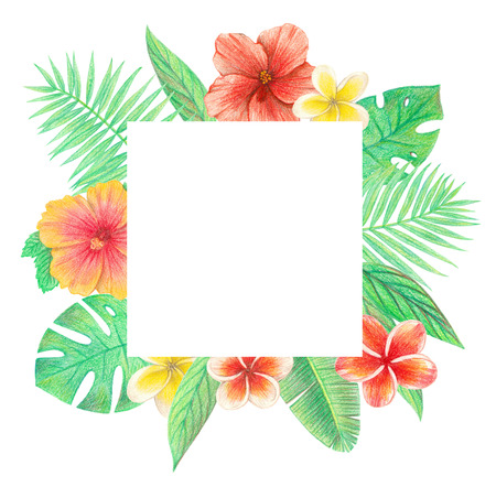 tropical exotic leaves and flowers frame. palm leaves, hibiscus and plumeria. hand drawing colored pencils illustration. isolated elements