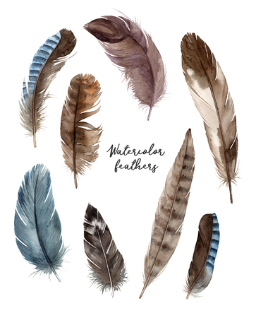 watercolor set illustrations feathers. hand painting isolated elements. 版權商用圖片 - 103732358