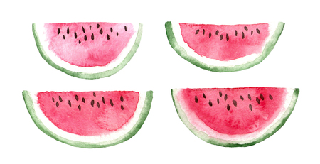 watercolor slices of watermelon. hand painted isolated elements.