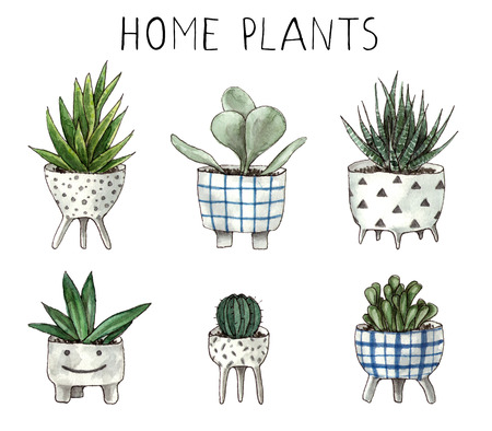 watercolor home plants. hand painting isolated elements. 版權商用圖片 - 103945521