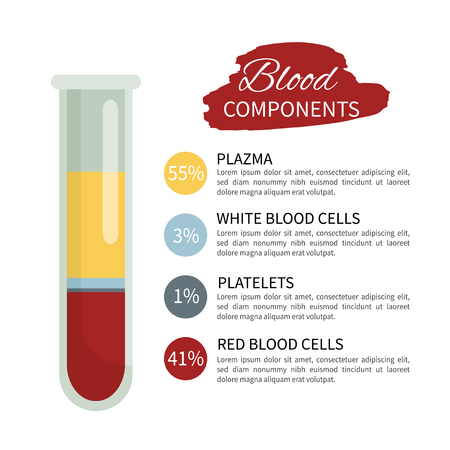 Infographics of the components of blood. A test tube with blood.