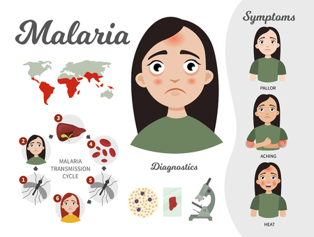 Infographics of malaria. Illustration of a cute girl. The development cycle of the malarial plasmodia. Statistics and symptoms of the disease.