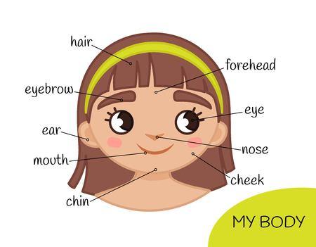 Materiale didattico per bambini Il mio corpo. La mia faccia. Illustrazione di una ragazza del fumetto.
