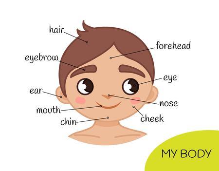 Material educativo para niños Mi cuerpo. Mi cara. Ilustración de un niño de dibujos animados.
