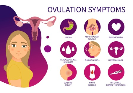 Vector poster ovulation symptoms. Illustration of a cute girl. Vektorové ilustrace