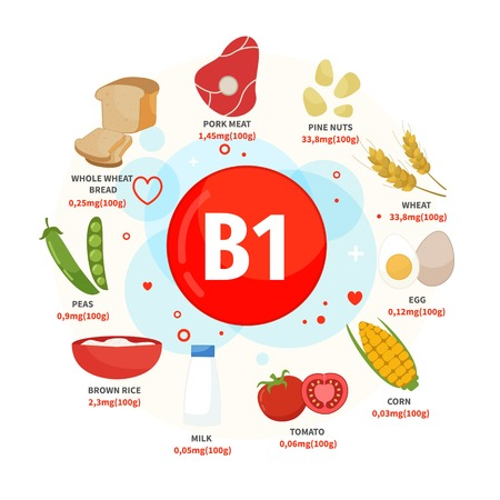 Vector poster products with vitamin B1. Cartoon illustrations of products. Ilustração