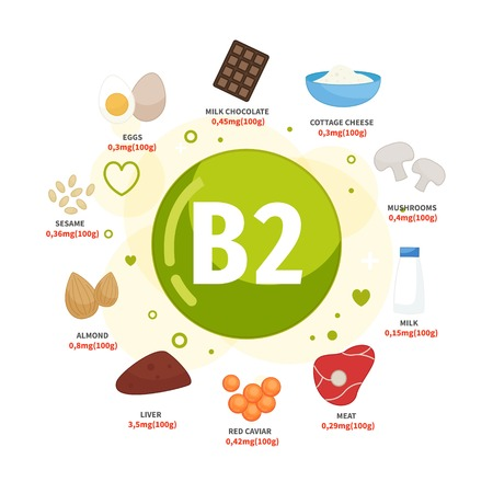 Vector poster products with vitamin B2. Cartoon illustrations of products.
