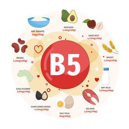 Produits d'affiches vectorielles avec de la vitamine B5. Illustrations de dessins animés de produits. Vecteurs