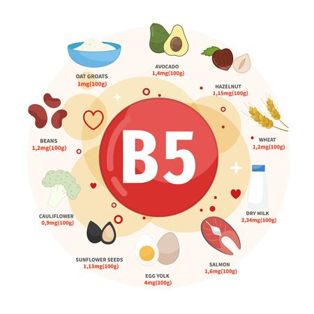 Vector poster products with vitamin B5. Cartoon illustrations of products.