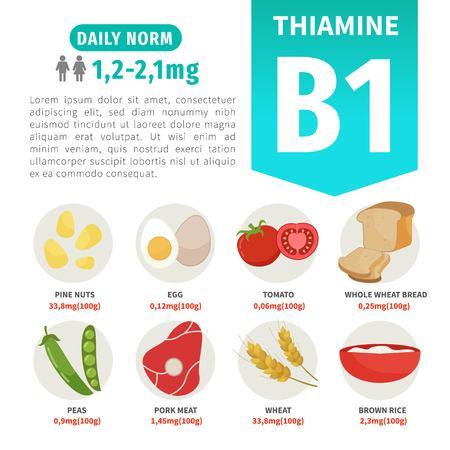 Vektorplakatprodukte mit Vitamin B1. Cartoon-Illustrationen von Produkten.