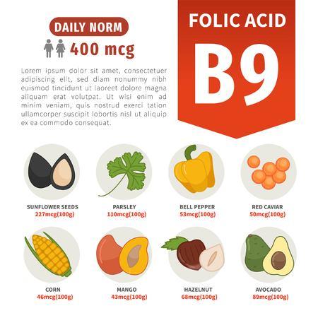 Productos de cartel de vector con vitamina B9. Ilustraciones de dibujos animados de productos. Ilustración de vector