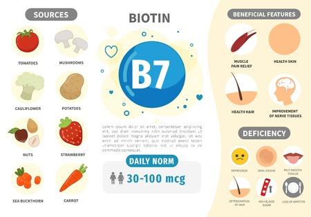 Infografica Vitamina B7. Prodotti contenenti vitamina. Norma quotidiana. Sintomi di carenza. Manifesto medico di vettore.