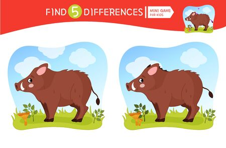 Find differences.  Educational game for children. Cartoon vector illustration of cute boar.