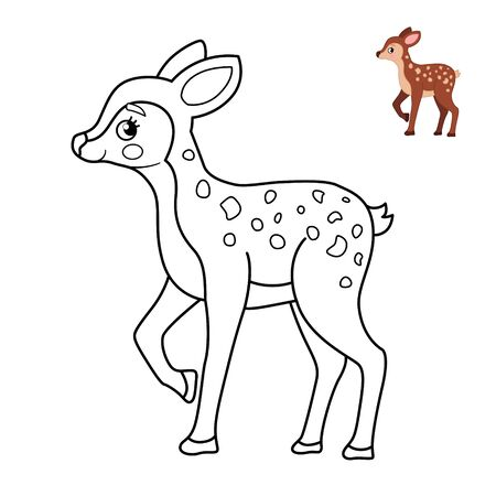 Coloring book for children. Forest animals. Cartoon cute fawn. Banco de Imagens - 130736556