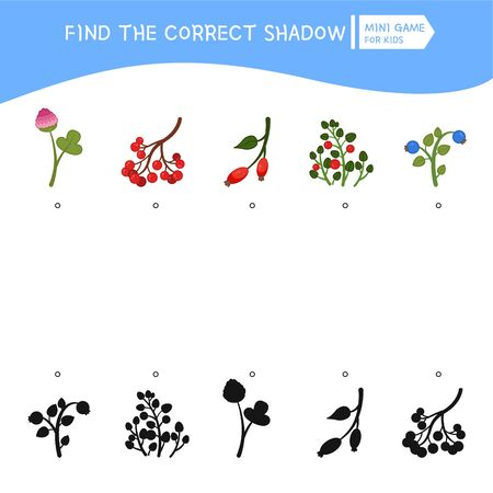 Educational  game for children. Find the right shadow. Kids activity with cartoon forest elements.