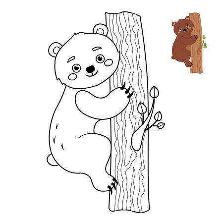 Coloring book for children. Forest animals collection. Cartoon cute bear.