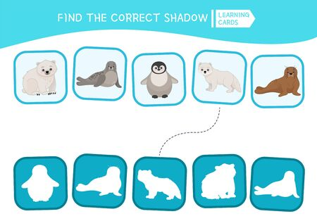 Educational game for children. Find the right shadow. Kids activity with arctic animals
