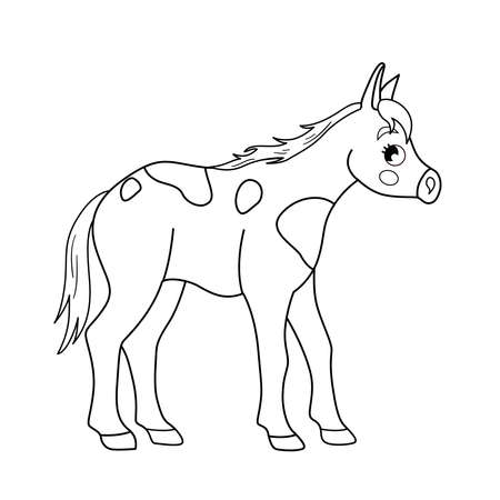 Coloring book for children. Farm animals. Foal.