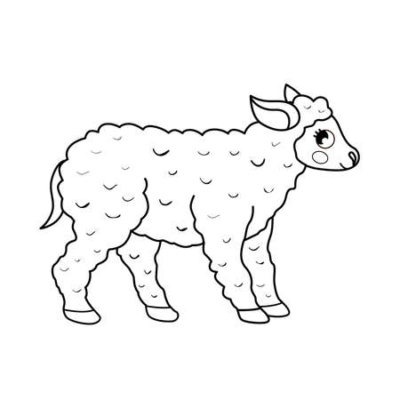 Coloring book for children. Farm animals. Sheep