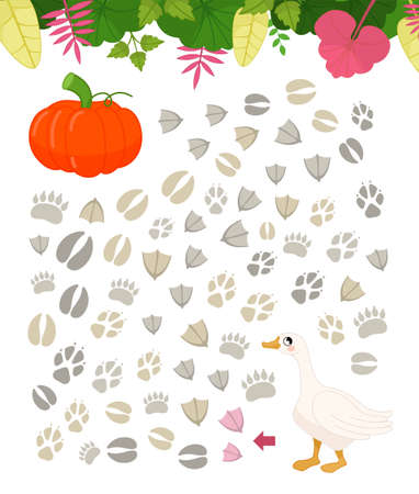 Maze game for children. Farm animals collection. Help the goose to find the pumpkin. Stockfoto - 158518811