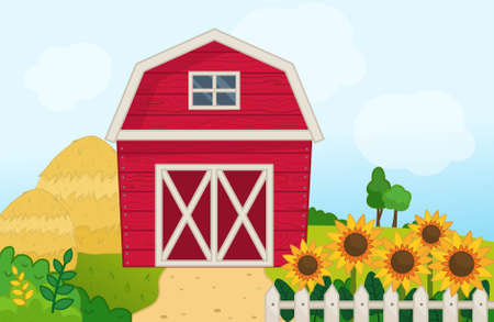 Illustration of a farm landscape in cartoon style. Red barn on the field. Farm scene with sunflowers and haystack.