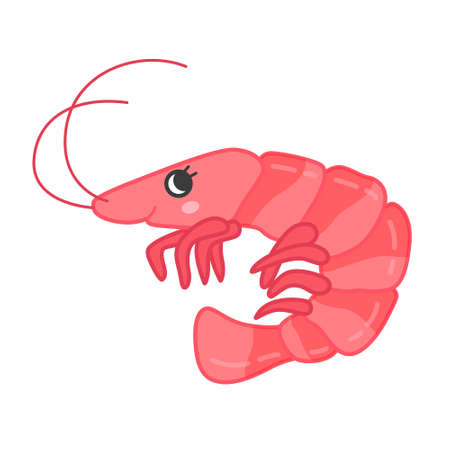 Collection of marine animals in cartoon style. Vector illustration of shrimp.