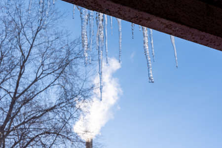 Transparent icicles hang from the roof against the blue sky and trees. Spring melting snow. Icicles falling danger concept
