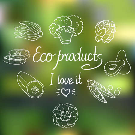 marrow: Vector Eco background with vegetables