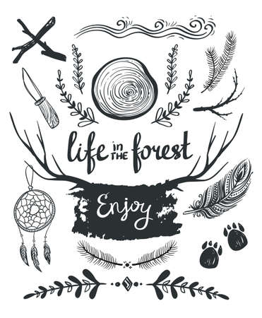 Set of design elements and clip art themed around  life in the forest. Illustration