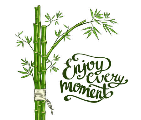 every: Bamboo green vector illustration. Enjoy every moment card. Illustration