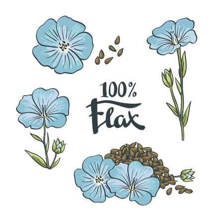 Lijnzaad en bloemen. vector Illustration