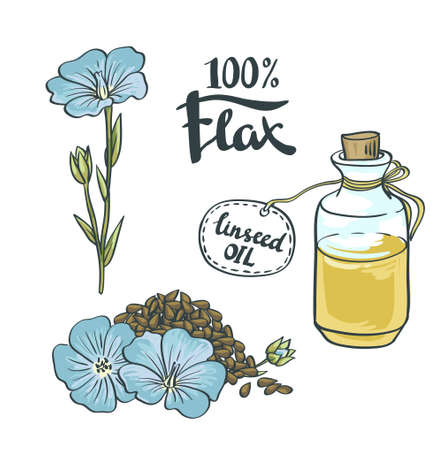 flax seed: Flax Seeds Oil in a Glass Bottle with flowers. Vector Illustration Illustration