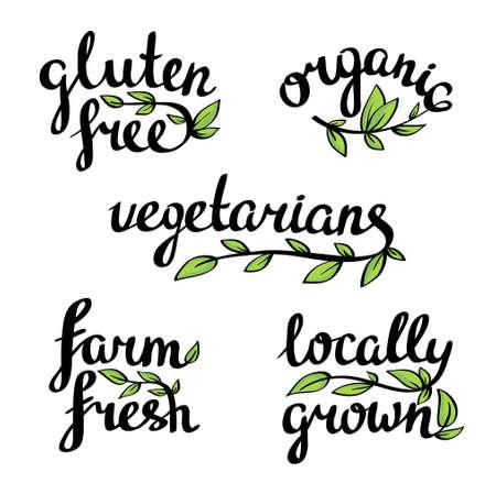 lettrage - aliment naturel organique, végétalien et végétariens Menu Vecteurs
