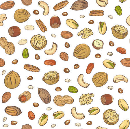 Vector seamless pattern hand sketched nuts on white background in hand drawn style: hazelnut, almonds, peanuts, walnut, cashew, pine nut, pistachios, coconut, pecan.
