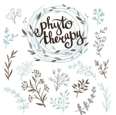 Phytotherapy background. Stylish lettering in the wreath and set of herbs. Natural vector collection with leaves.