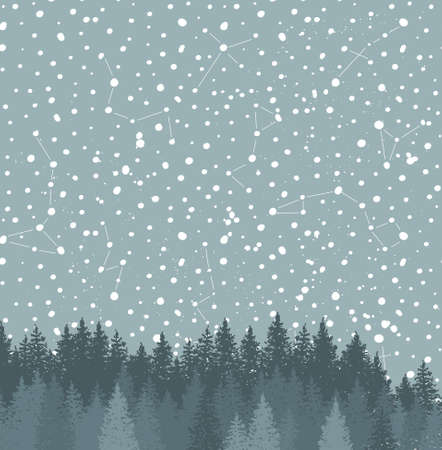 Forest and Night sky with stars vector background. Space backdrop. Illustration