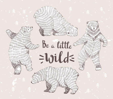 danced: Set of sketched bears with the stylish hipster calligraphy Be a little wild. Vector hand drawn illustration.