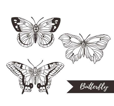 手には、ロゴのデザイン コレクションの蝶が描かれました。ベクトルの要素は、白い背景で隔離。