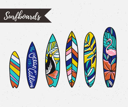 Set of surfboards with tropical plants and birds. Vector isolated objects.