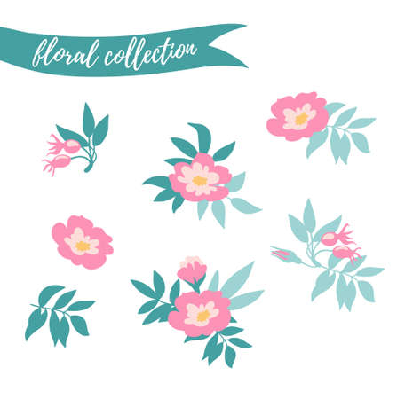 Vector floral set. Colorful floral collection with leaves and flowers hand drawn. Spring or summer design for invitation, wedding or greeting cards.