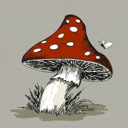 Mushroom Amanita with grass. Vector illustration