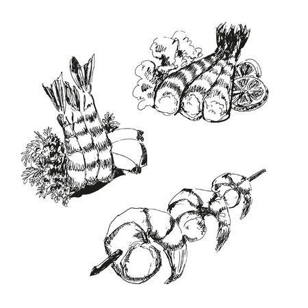 seafood salad: Seafood. Shrimps. Hand drawn illustration. Illustration